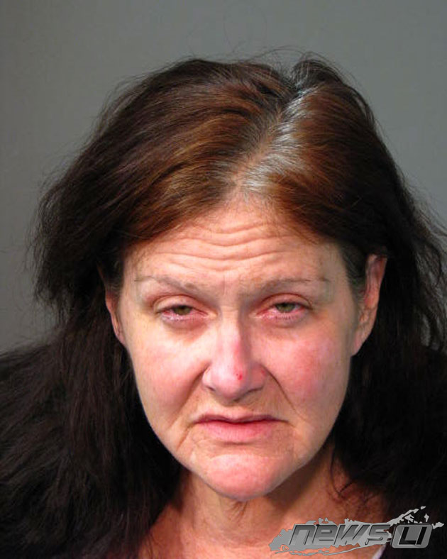 Cops: Hauppauge Woman, Mary Elliott, 50, Charged in Grand Larceny at Long Island Children's Museum