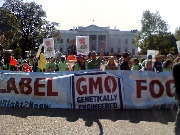 U.S. Senate Rejects GMO Labeling Ban